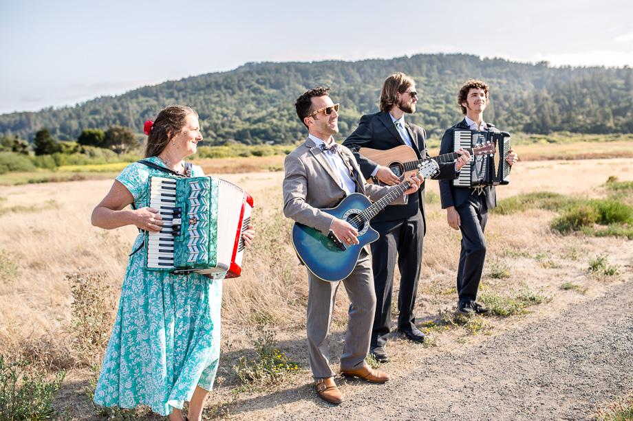 the wedding musicians